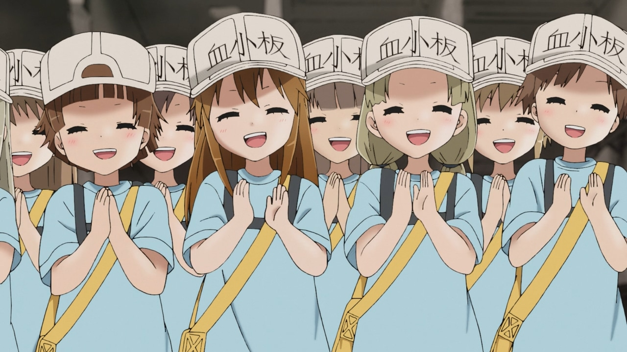 Platelet (Cells at Work)